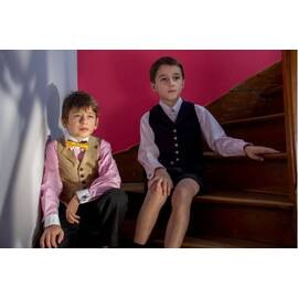 Gérard-purple Thick wool costume vest, standard Cut-